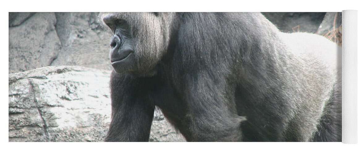 Gorilla Yoga Mat featuring the photograph Gentle Giant by Stacey May