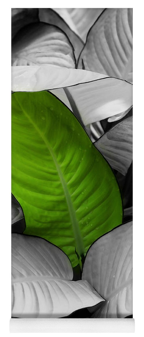 Leaf Yoga Mat featuring the photograph Going Green - Dreamy by Marilyn Hunt