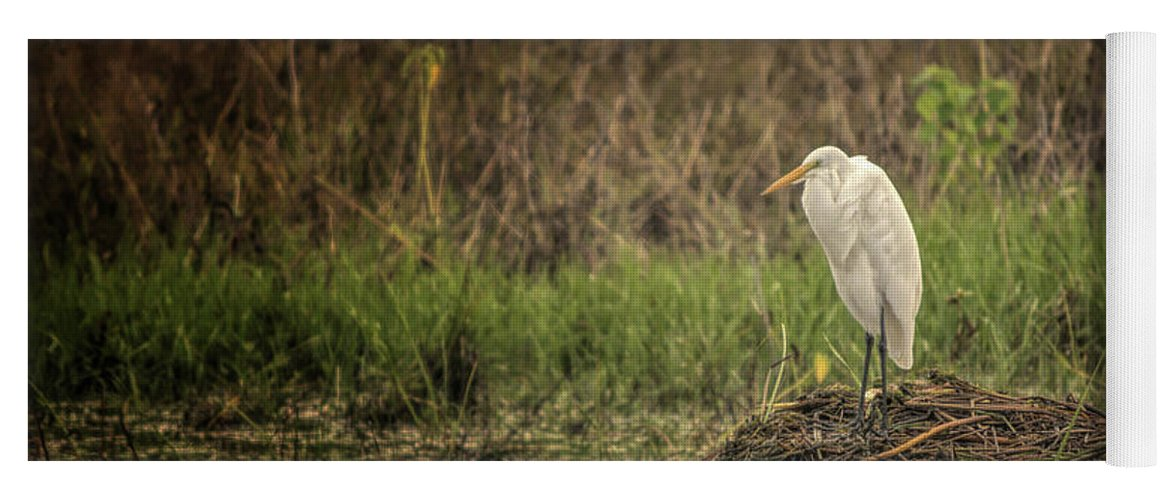 Egret Yoga Mat featuring the photograph Great White Egret by Gaby Swanson