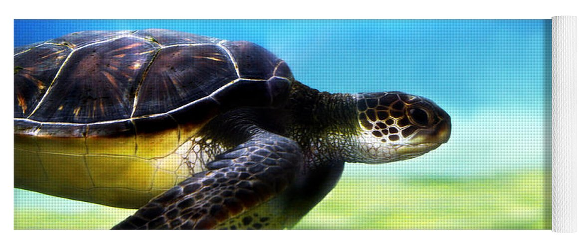 Green Yoga Mat featuring the photograph Green Sea Turtle 2 by Marilyn Hunt