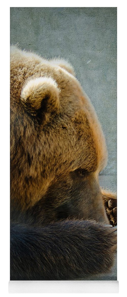 Bear Yoga Mat featuring the photograph Grizzly Bear Lying Down by Betty LaRue