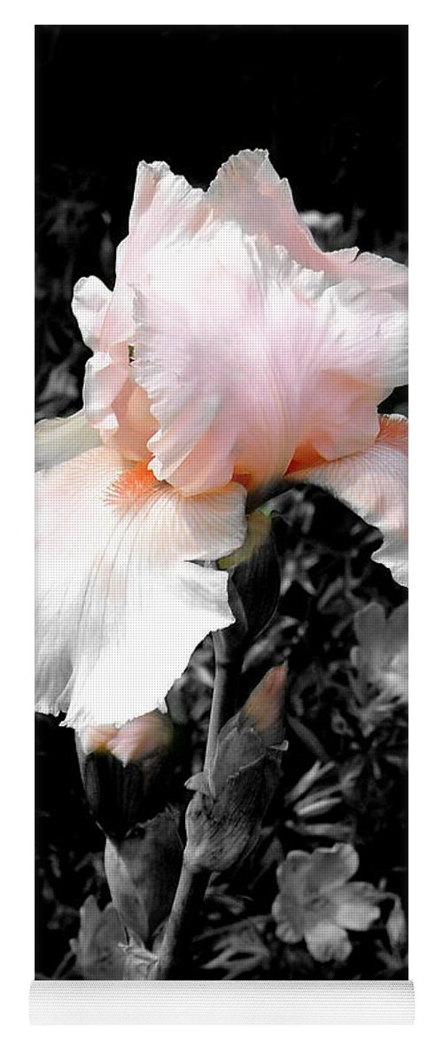 Flower Yoga Mat featuring the photograph Iris Emergance by Steve Karol