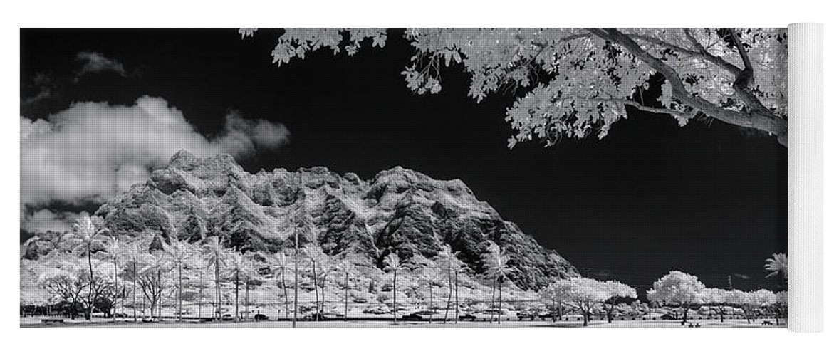 Black And White Yoga Mat featuring the photograph Kualoa Pods N Palms by Sean Davey