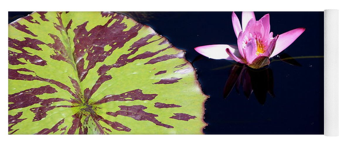 Lavender Rose Waterlily In Blue Charcoal Waters Yoga Mat