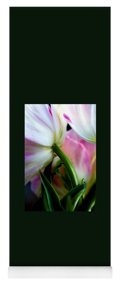 Flower Yoga Mat featuring the photograph Layers of Tulips by Marilyn Hunt
