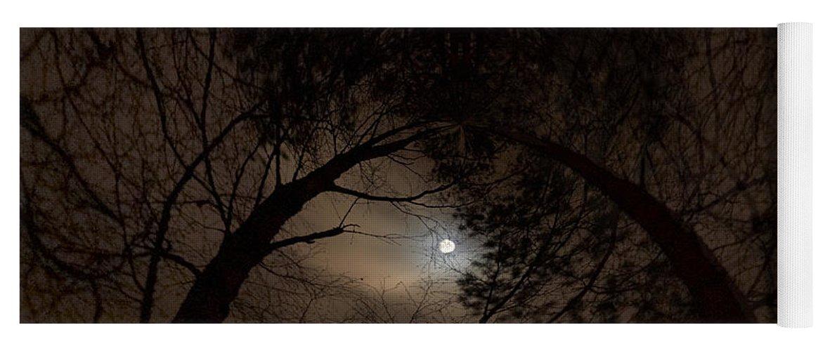 Lehtokukka Yoga Mat featuring the photograph Moonshine 14 The Trees by Jouko Lehto