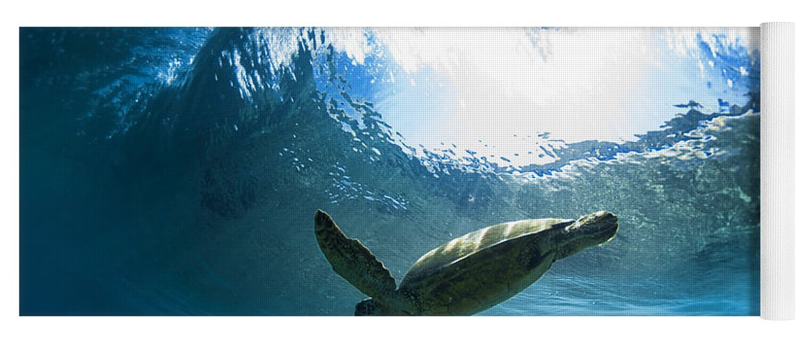 Under Water Yoga Mat featuring the photograph Pipe Turtle Glide by Sean Davey