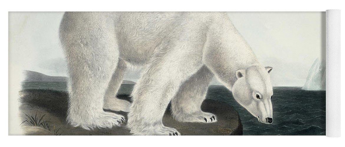 Arctic Yoga Mat featuring the painting Polar Bear by John James Audubon