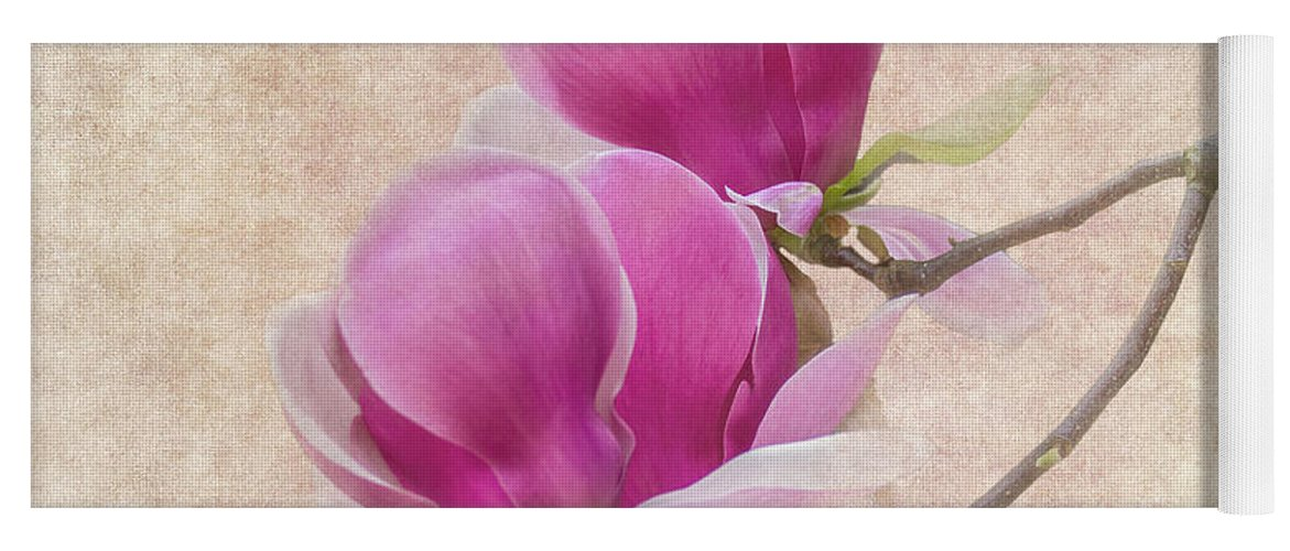 Magnolia Yoga Mat featuring the photograph Purple Tulip Magnolia by Heiko Koehrer-Wagner