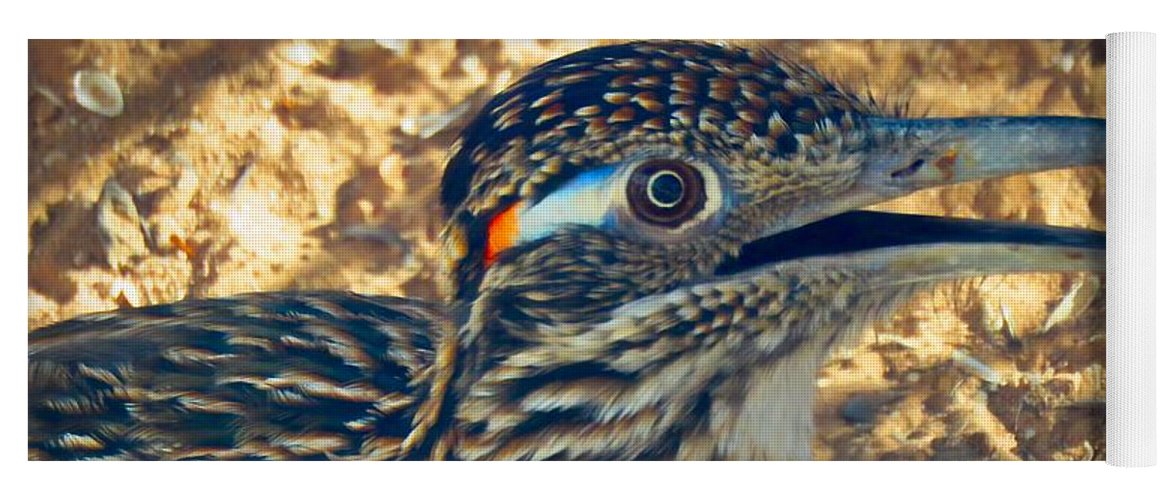 Arizona Yoga Mat featuring the photograph Roadrunner Portrait by Judy Kennedy