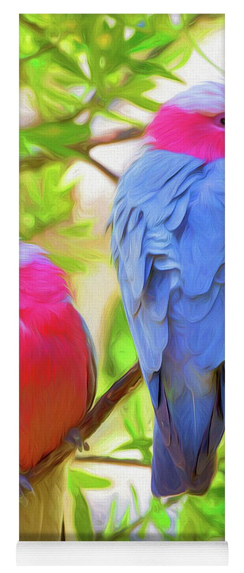 Galahs Yoga Mat featuring the photograph Rose cockatoos by Sheila Smart Fine Art Photography
