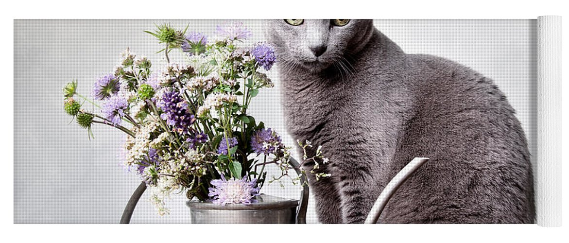 Cat Yoga Mat featuring the photograph Russian Blue 02 by Nailia Schwarz