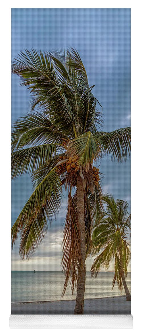 Key Yoga Mat featuring the photograph Smathers Beach Coconut Sunset by Betsy Knapp