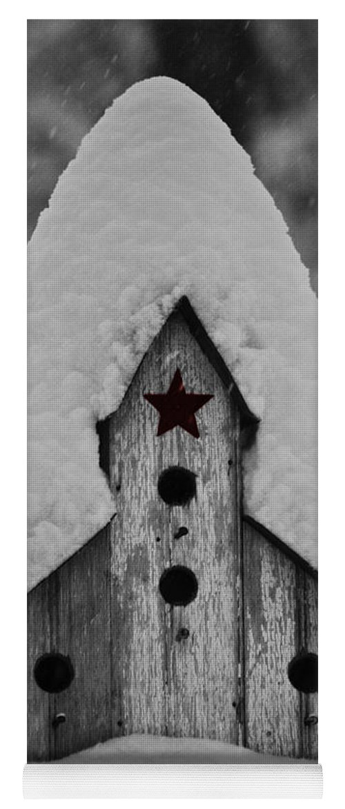 Snow Yoga Mat featuring the photograph Snow Covered Birdhouse by Teresa Mucha