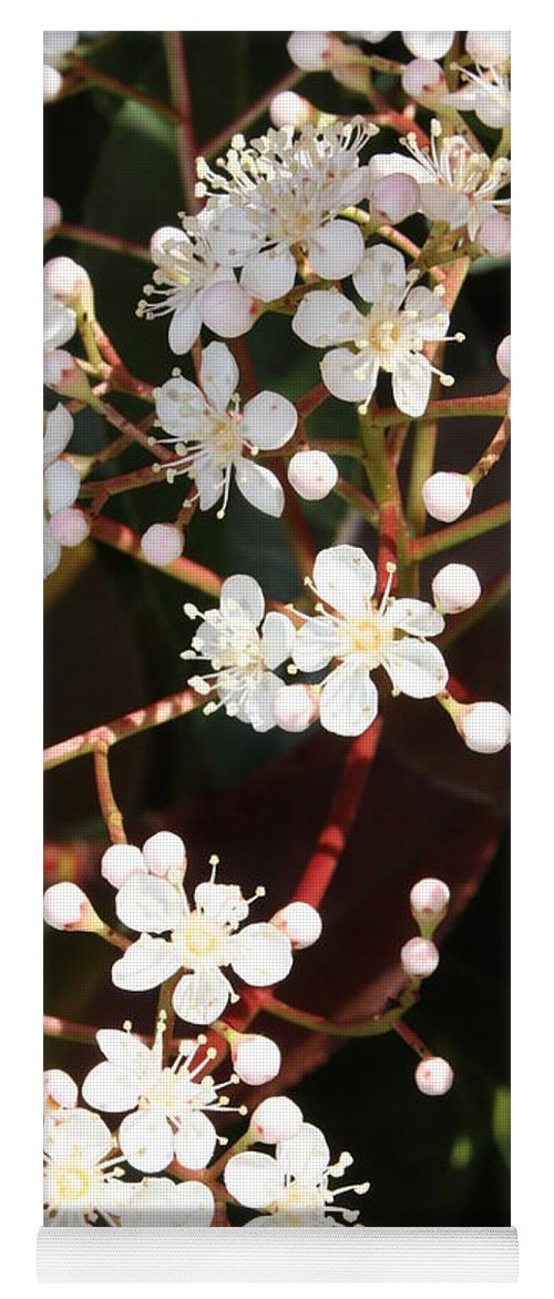 Spring Yoga Mat featuring the photograph Spring Blossoms Macro by Carol Groenen
