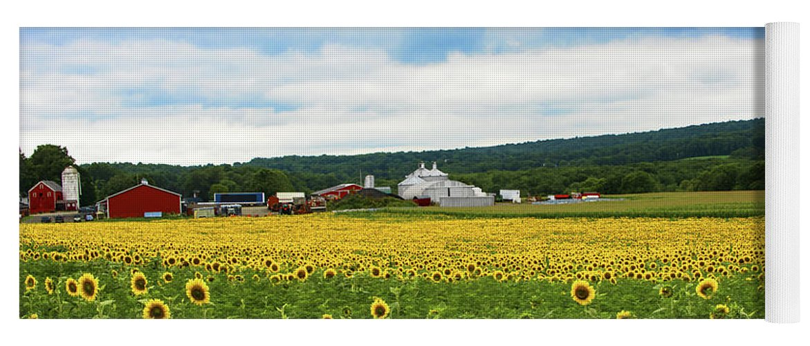 Landscape Yoga Mat featuring the photograph Sunflower Country Landscape by Regina Geoghan