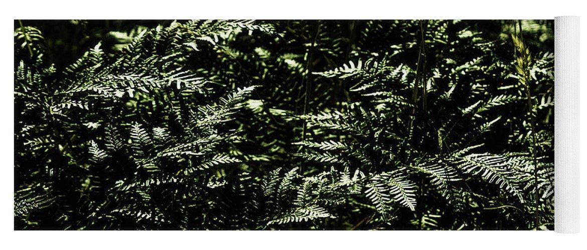 Green Yoga Mat featuring the photograph Textures Of A Rainforest by Jorgo Photography - Wall Art Gallery