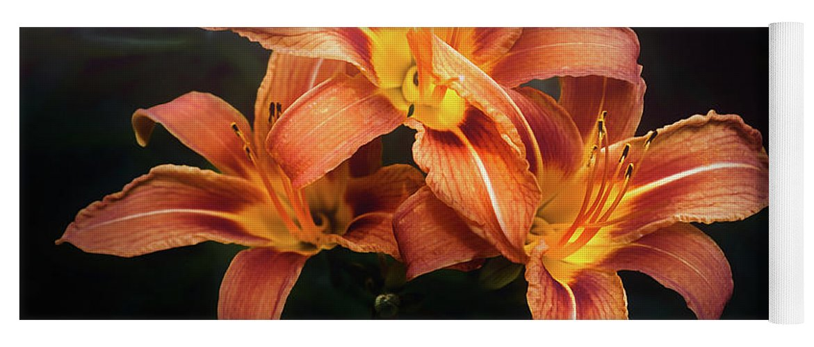 Lily Yoga Mat featuring the photograph Three Lilies by Scott Norris