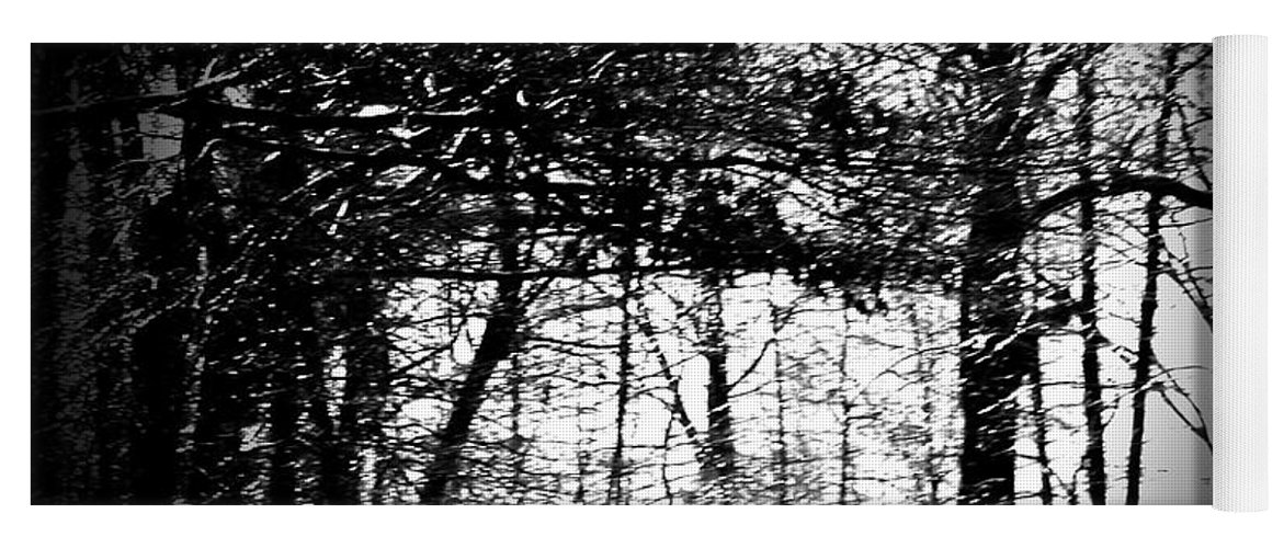 Trees Yoga Mat featuring the photograph Through The Lens- Black And White by Charleen Treasures