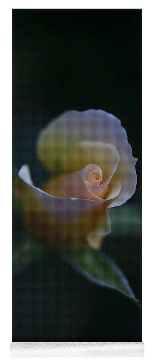 Flower Yoga Mat featuring the photograph Tiny Pink Rosebud by Deborah Benoit