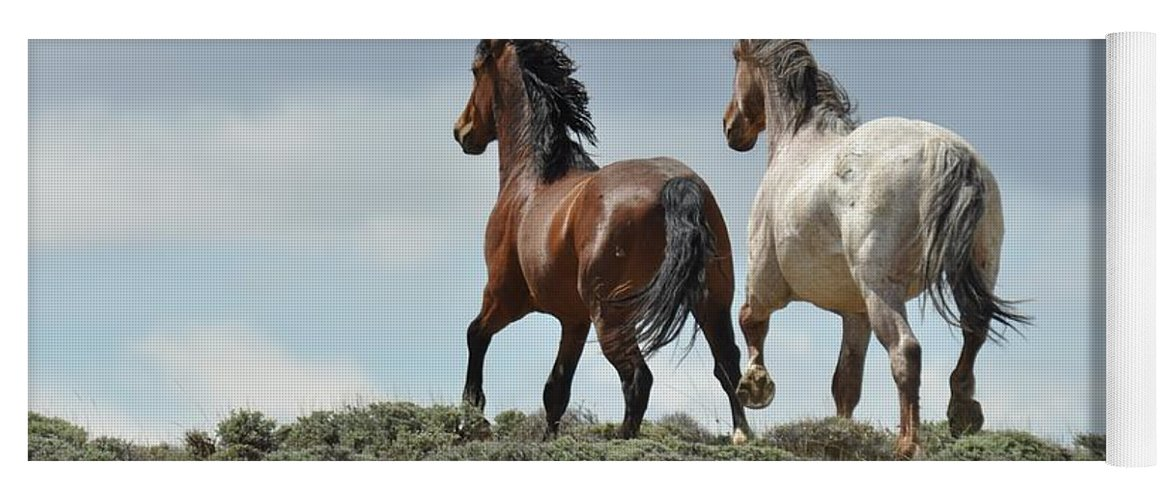 Wild Horses Yoga Mat featuring the photograph Too Beautiful by Frank Madia