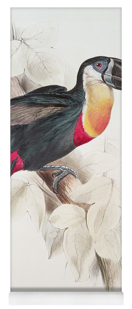 Sulphur Yoga Mat featuring the painting Toucan by Edward Lear