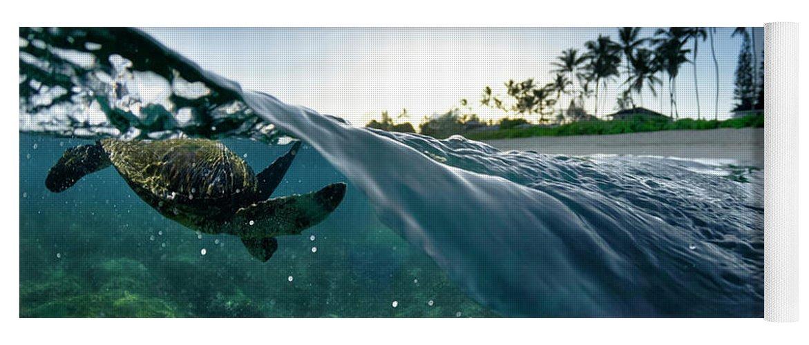 Split Level Yoga Mat featuring the photograph Turtle Split by Sean Davey