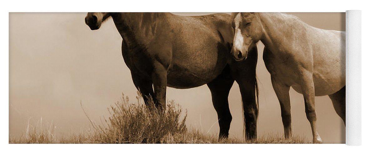 Horses Yoga Mat featuring the photograph Wild Horses In Western Dakota by Cris Fulton