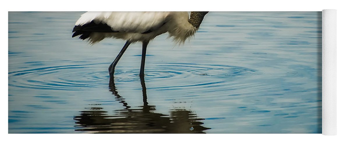 Stork Yoga Mat featuring the photograph Wood Stork by Rich Leighton