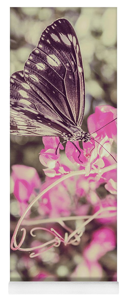 Butterfly Yoga Mat featuring the photograph Antique Spring by Jorgo Photography - Wall Art Gallery