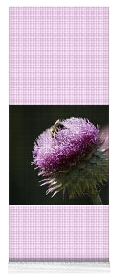 Bee Yoga Mat featuring the photograph Bee on Thistle by Nancy Ayanna Wyatt