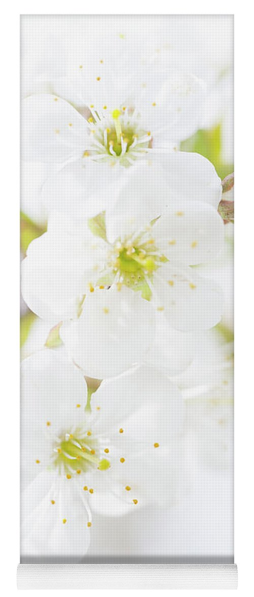 White Yoga Mat featuring the photograph Ethereal Blossoms by Emily Johnson