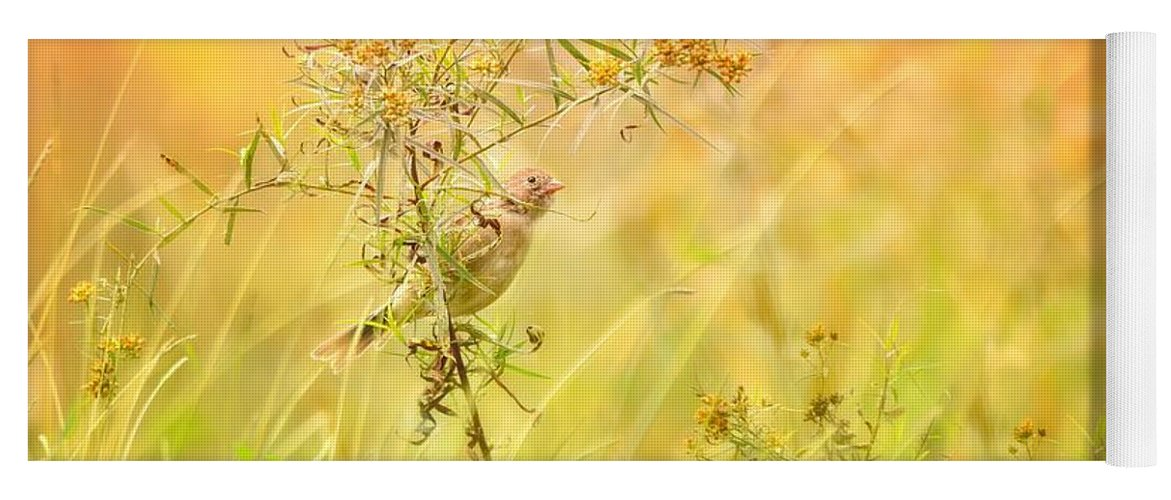 Aves Yoga Mat featuring the photograph Field Sparrow by Heather Hubbard