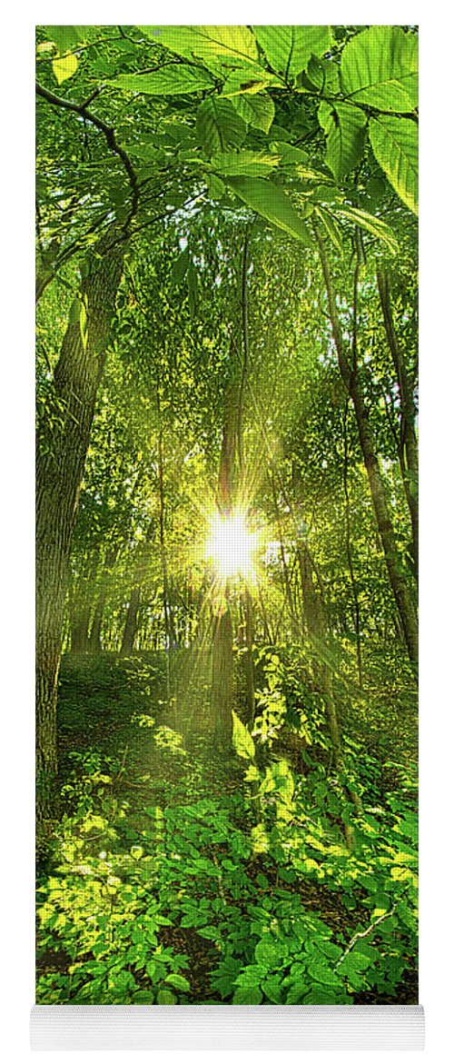 Life Yoga Mat featuring the photograph My Secret Place by Phil Koch
