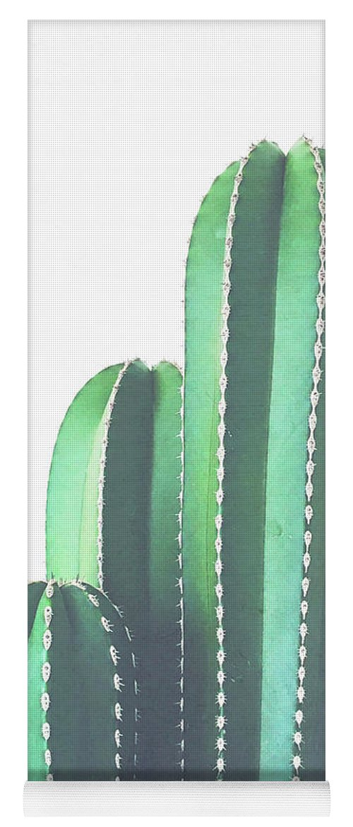 Cactus Yoga Mat featuring the photograph Organ Pipe Cactus by Cassia Beck