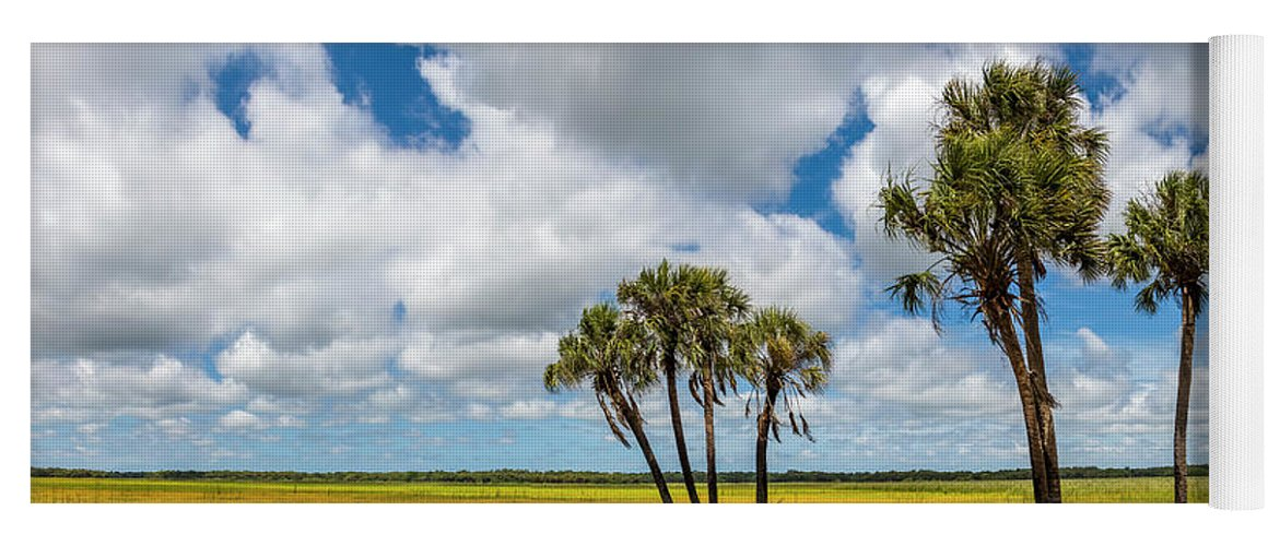 Photography Yoga Mat featuring the photograph Palm Trees In The Field Of Coreopsis by Panoramic Images