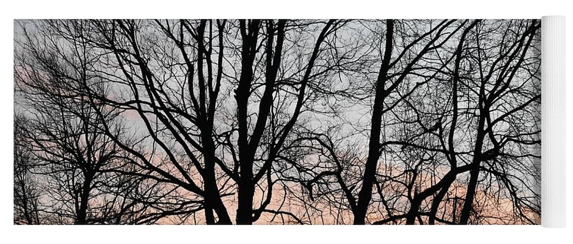 Trees Yoga Mat featuring the photograph Pink Sky by Cassidy Marshall