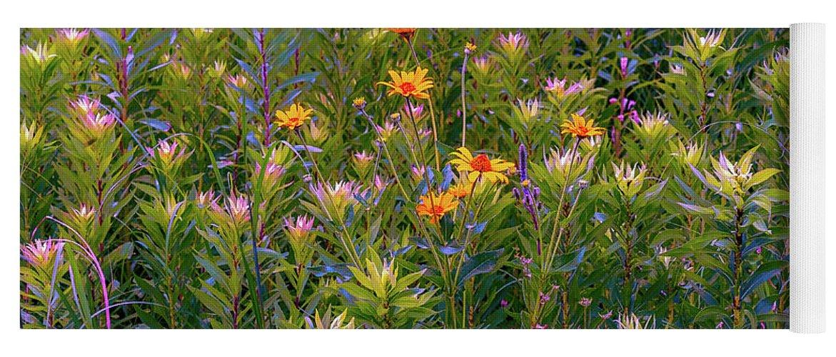 Yoga Mat featuring the photograph Rainbow Garden by Joel Friedman