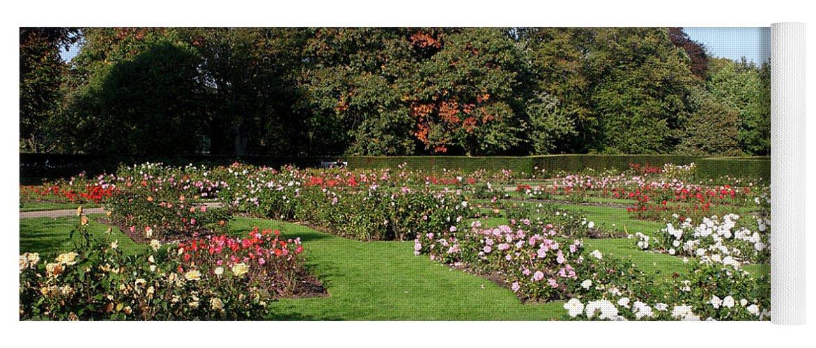 London Yoga Mat featuring the photograph Rose Garden At Greenwich Park by Aidan Moran
