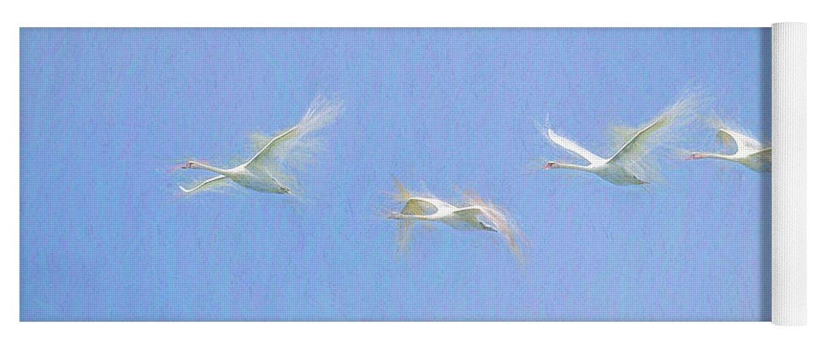 Swan Art Yoga Mat featuring the photograph Swans Flying Art by David Pyatt