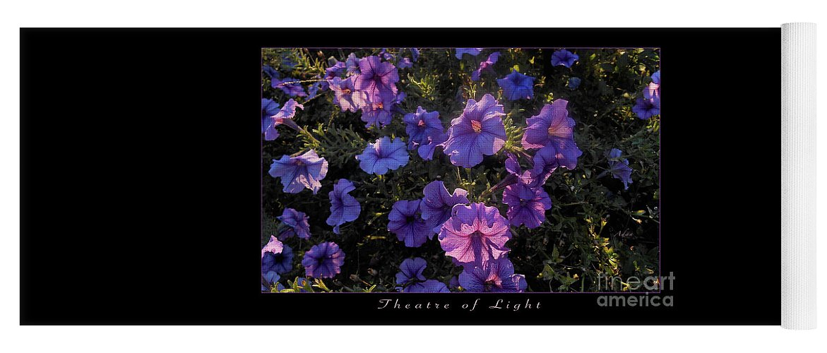 Purple Flowers Yoga Mat featuring the photograph Theatre of Light Horizontal Poster by Felipe Adan Lerma