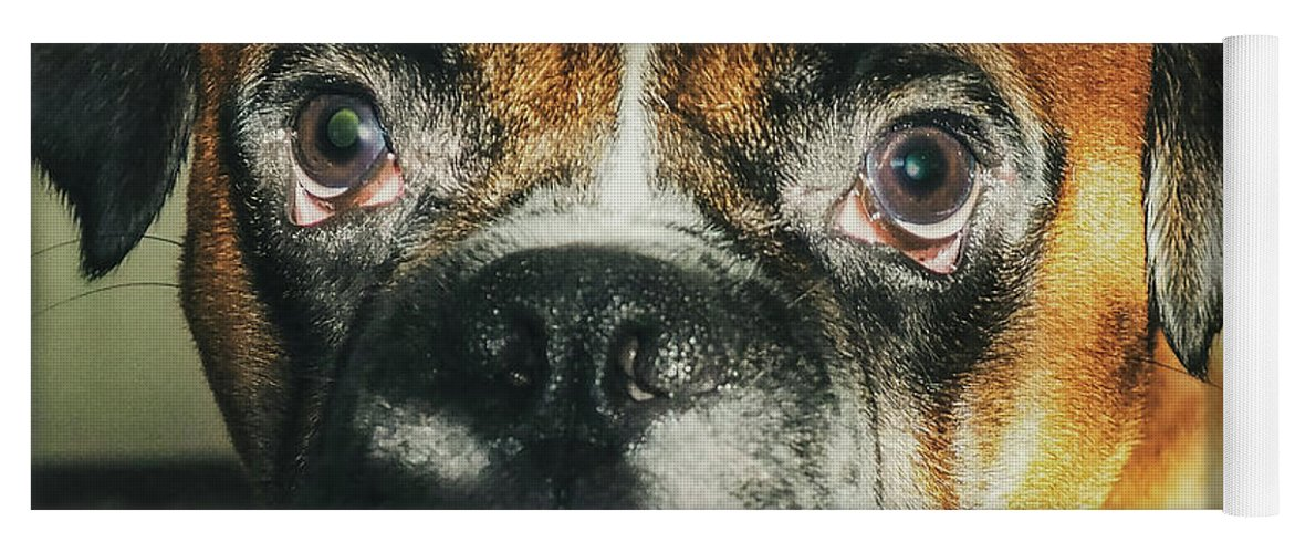 Dog Yoga Mat featuring the photograph Where'd Everybody Go by CWinslow Shafer