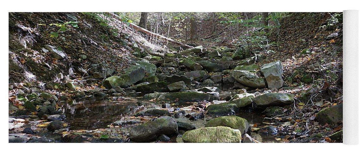 Fall Foliage Yoga Mat featuring the photograph Bark Rocks 6 by Chris Naggy