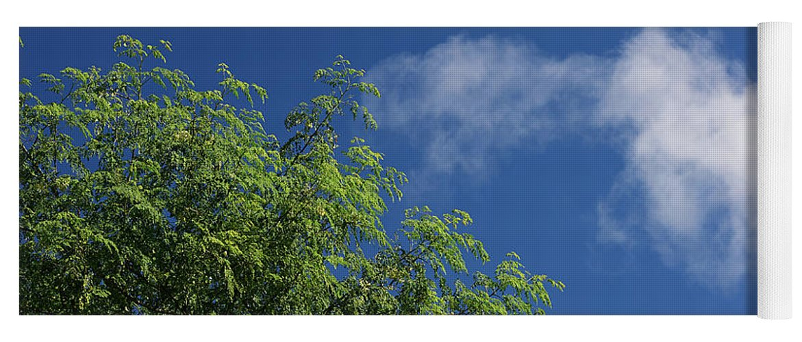 Trinidad Yoga Mat featuring the photograph Cloud Meets Tree by Trinidad Dreamscape