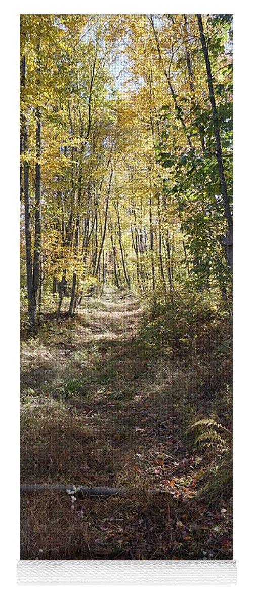 Hidden Trail Yoga Mat featuring the photograph Hidden Trail by Chris Naggy