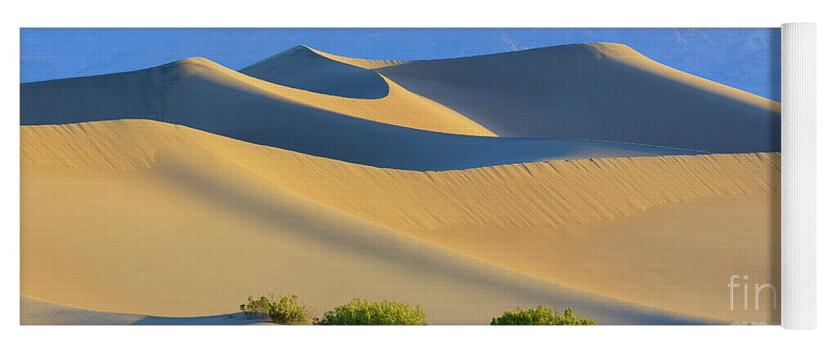 Bush Yoga Mat featuring the photograph Mesquite Flat Sand Dunes In Death Valley National Park by Henk Meijer Photography