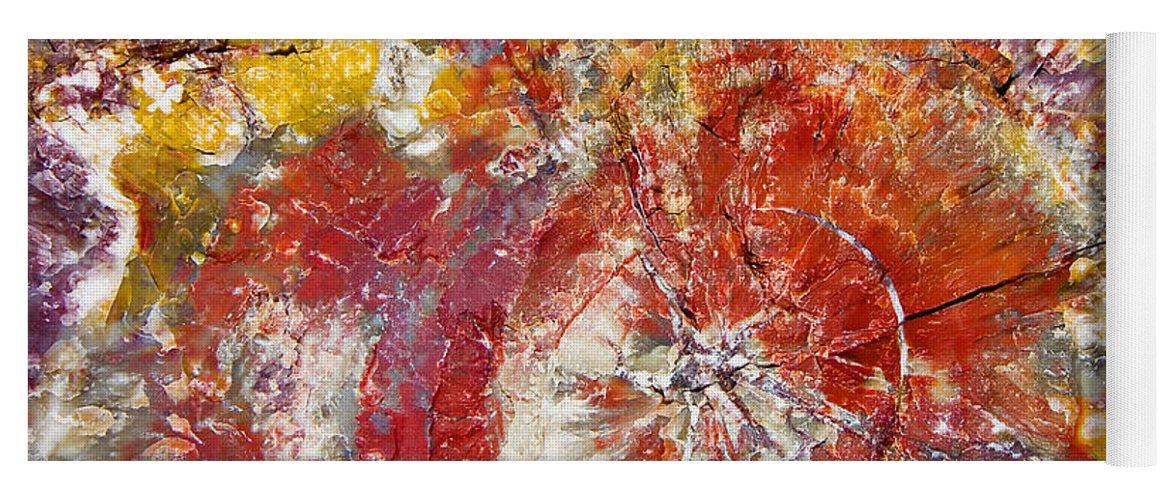Petrified Wood Stone Texture Abstract Color Skip Hunt Yoga Mat featuring the photograph Painted Desert Wood 1 by Skip Hunt