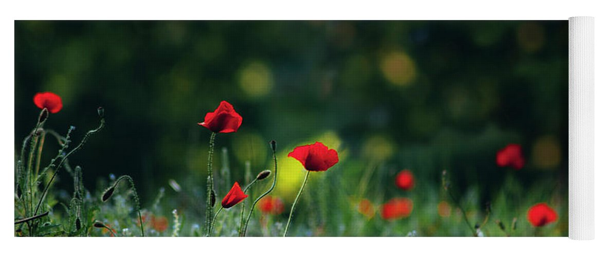 Background Yoga Mat featuring the photograph Poppies On Green by Vicente Sargues