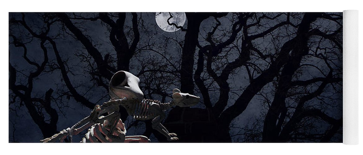 Raven Yoga Mat featuring the photograph Raven and Rat Skeleton in Moonlight - Halloween by Colleen Cornelius