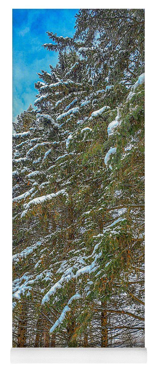 Nature Yoga Mat featuring the photograph Winter trees by M Forsell